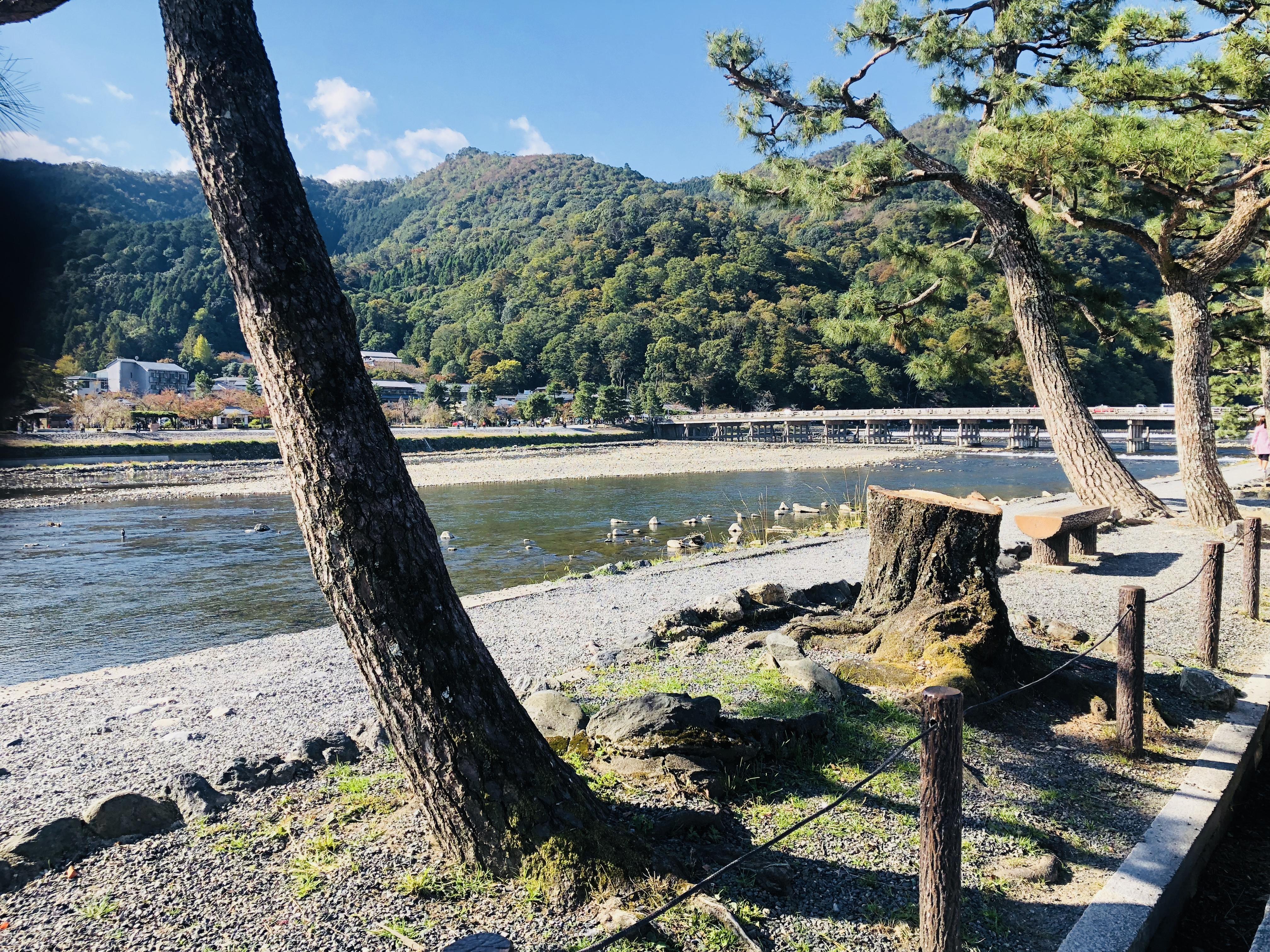 http://www.810810.co.jp/blog_run7/012.JPG