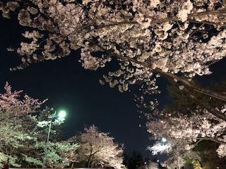 http://www.810810.co.jp/blog_run7/0509/IMG_2117.jpg