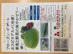 ゼリ-1IMG_0261.jpg